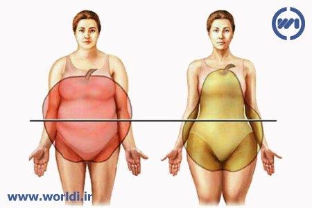 نسبت دور کمر به باسن (WHR)