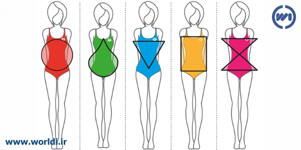 انواع شکل بدن خانم ها